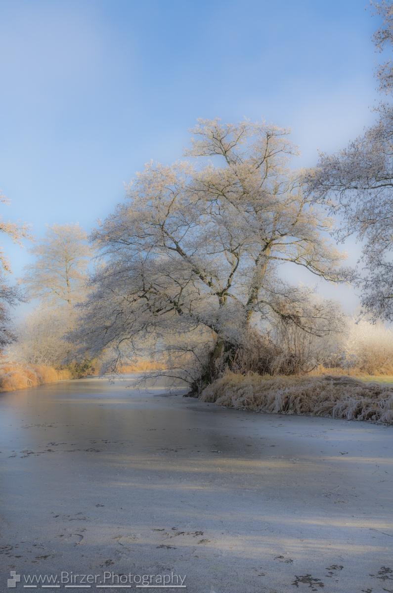 Frosty winter day